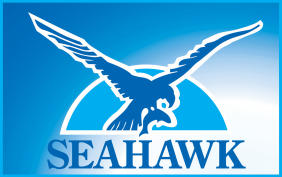 seahawk logo, Dentons Digital, Website Design Build, Wiltshire, Somerset